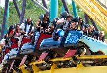 Entertainment reports record quarterly revenue